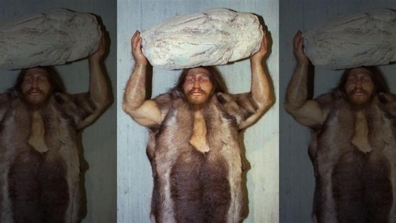 исследования неандертальцы: