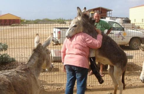 Животные способны на благодарность
