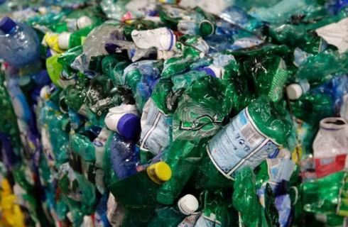 Бактерии избавят от мусора