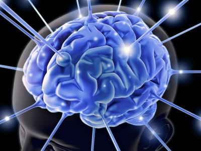 Мозг удаляет старую информацию