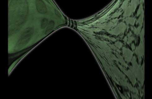 Ученые создали очень прочный «зеленый» пластик