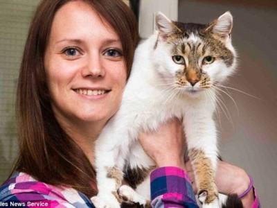 Кошка Хлоя с хозяйкой