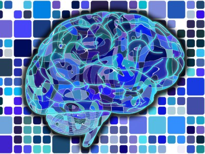 Словарь мозга