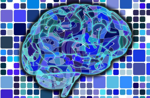 Ученые работают над составлением словаря мозга