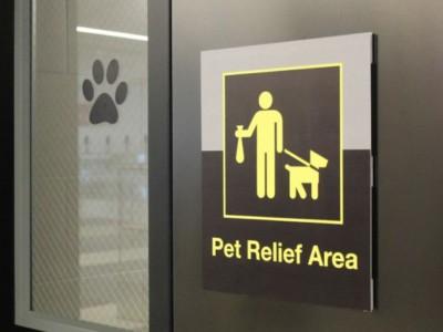 Туалет для животных