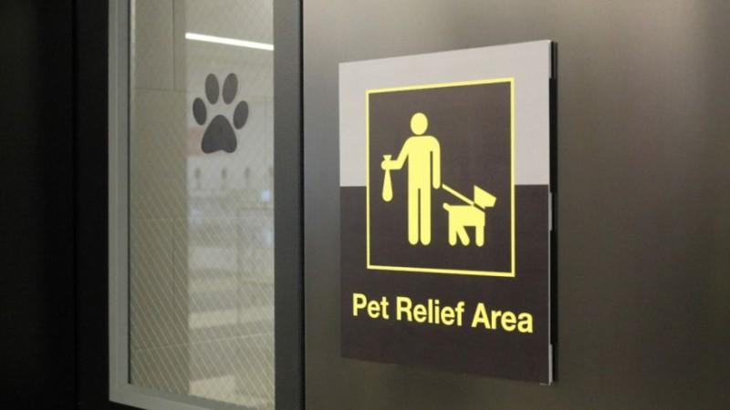 В аэропортах обустроят туалет для животных