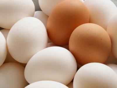 Продукты для мозга. Яйца