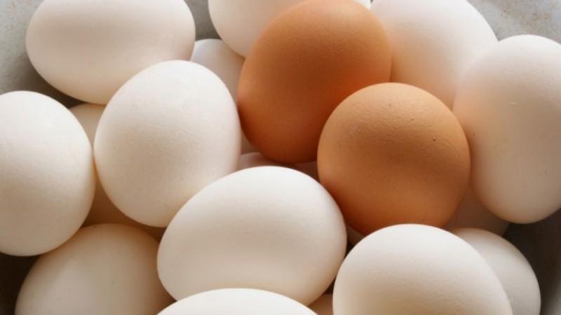 7 продуктов, улучшающих работу мозга