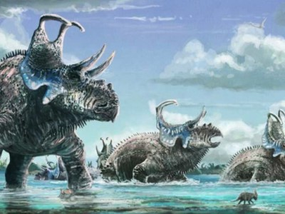 Рогатый динозавр Machairoceratops cronusi