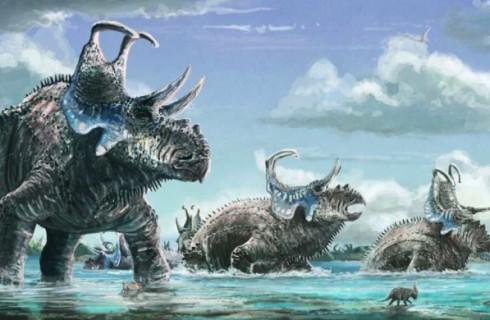 Новые рогатые динозавры нашлись в Юте