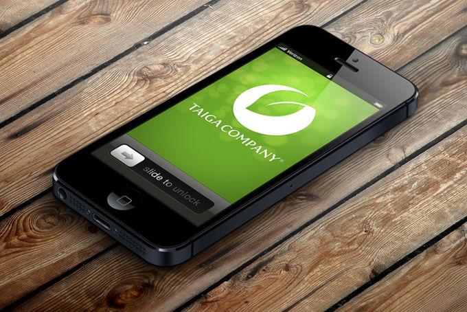 TaigaPhone скоро появится на российских прилавках