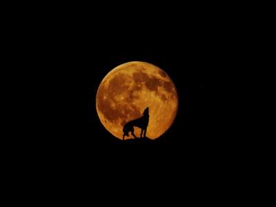 Фазы Луны. Полнолуние