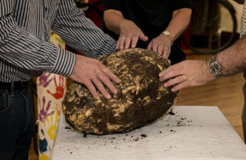 Археологи предлагают сделать доисторический бутерброд