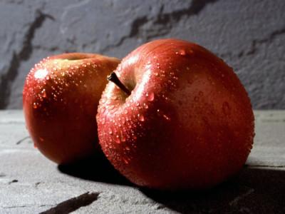 Вырастить ухо в яблоке — реально