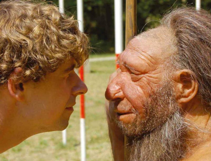 Неандертальцы замерзли без курток