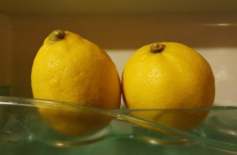 Хлебу и помидорам не место в холодильнике, или правила хранения продуктов питания