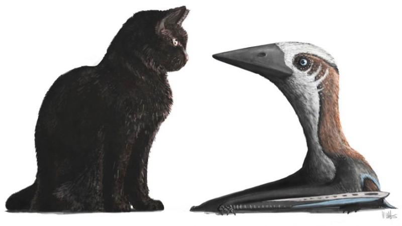 Динозавры были размером с кошку