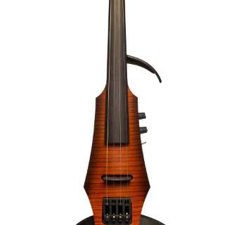 10 лучших электрических скрипок 2016 года