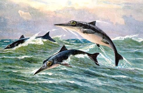 Палеонтологи нашли новых ихтиозавров