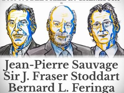Нобелевская премия по химии 2016