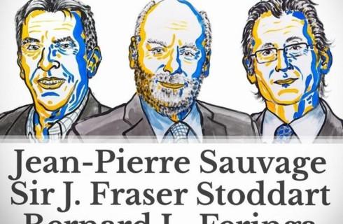Нобелевскую премию по химии присудили за контролируемые молекулы