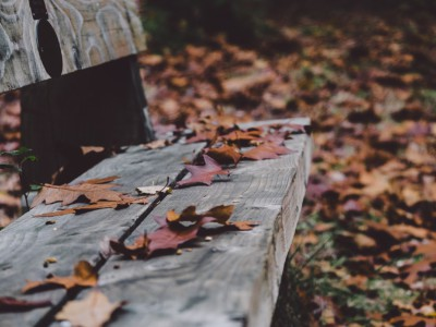 10 фактов о ноябре