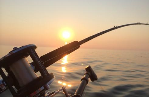 Ученые: рыбалка снижает риск смерти от инфаркта