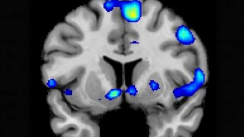 Как религия влияет на мозг