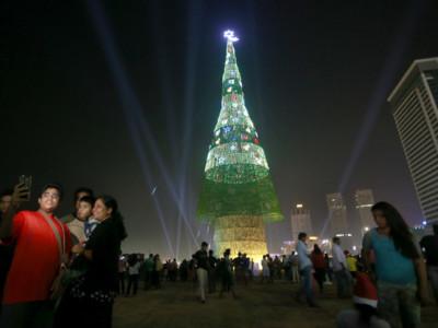 Самая высокая елка в Шри-Ланке