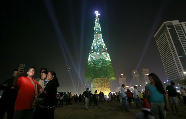 Шри-Ланка победила весь мир по высоте елки