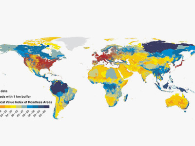 Всемирная карта бездорожья