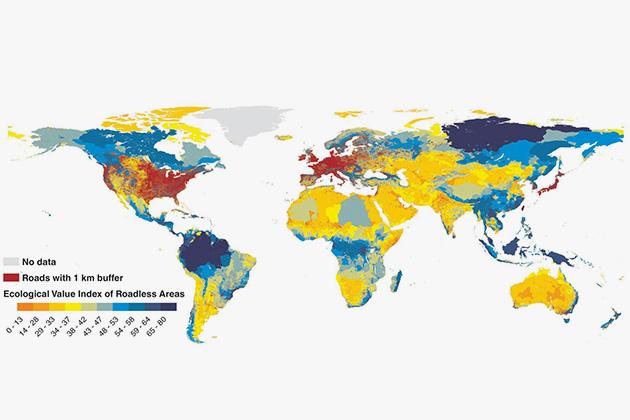 На глобальной карте бездорожья РФ заняла главное место