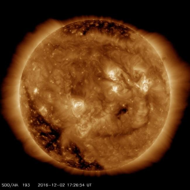 Солнце подарило улыбку землянам