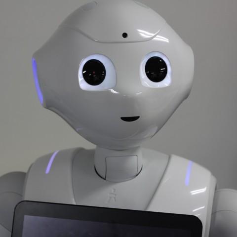 Роботы-гуманоиды станут персональными сиделками для больных