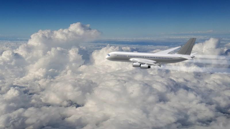 Самые причудливые запросы пассажиров самолетов