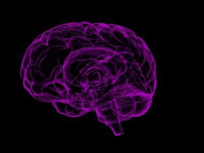 Мозг творческих людей