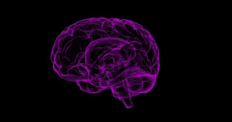 Мозг творческих людей отличается уникальными особенностями