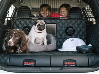 Nissan 4Dogs