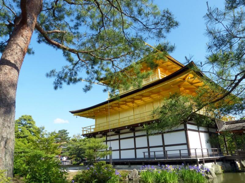 Пять вещей, которые нужно знать о Киото