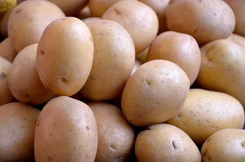 Марс может стать картофельной плантацией