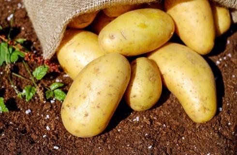 Ученые: овощи нельзя чистить