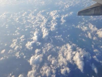 Страх перед полетами. Фотограф Екатерина Пастухова