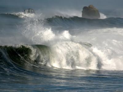 Глубинные бактерии могут быть под Тихим океаном