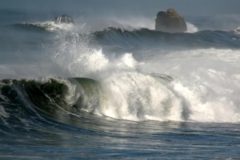 Жизнь существует и под океанским  дном