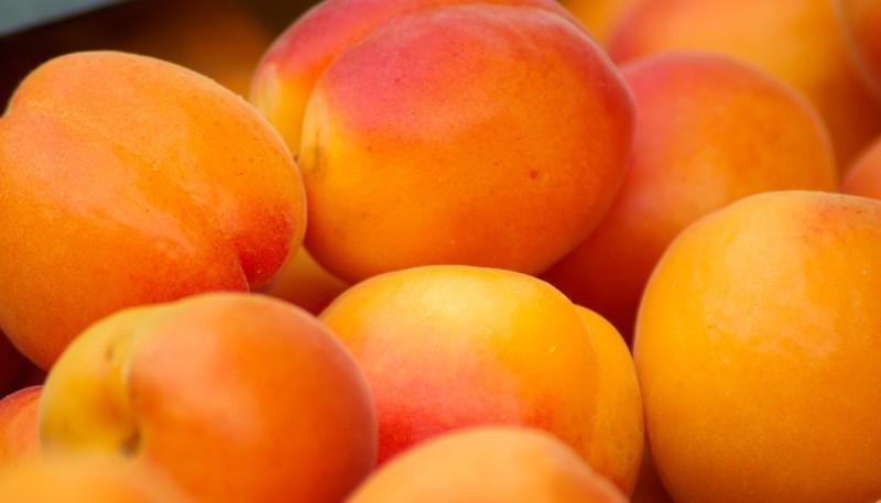 Свежие фрукты спасут от диабета