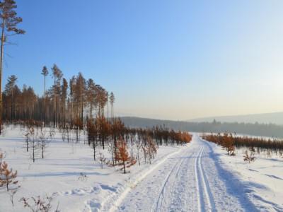 Климат влияет на внешность. Сибирь