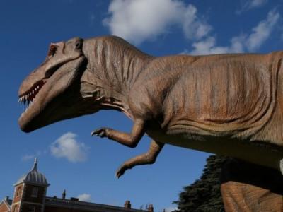 Динозавры эволюционировали в птиц