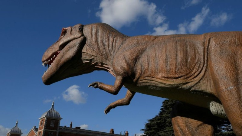 Динозавры превратились в птиц