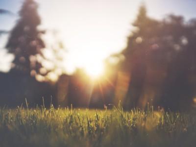 Просыпаться бодро и видеть рассвет — реально