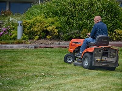 Заработать деньги поможет стрижка газона
